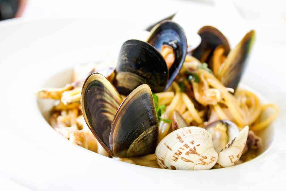 Types of Clams, Clamshell Packaging and Sweet Recipes